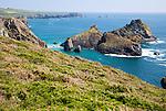 Coastal scenery, near Kynance Cove, Lizard peninsula, Cornwall, England, UK - Gull Rock and The Bishop