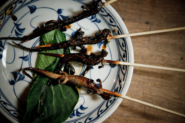 Tokyo, March 2011 - Grilled salamanders in Asadachi restaurant, Shinjuku.