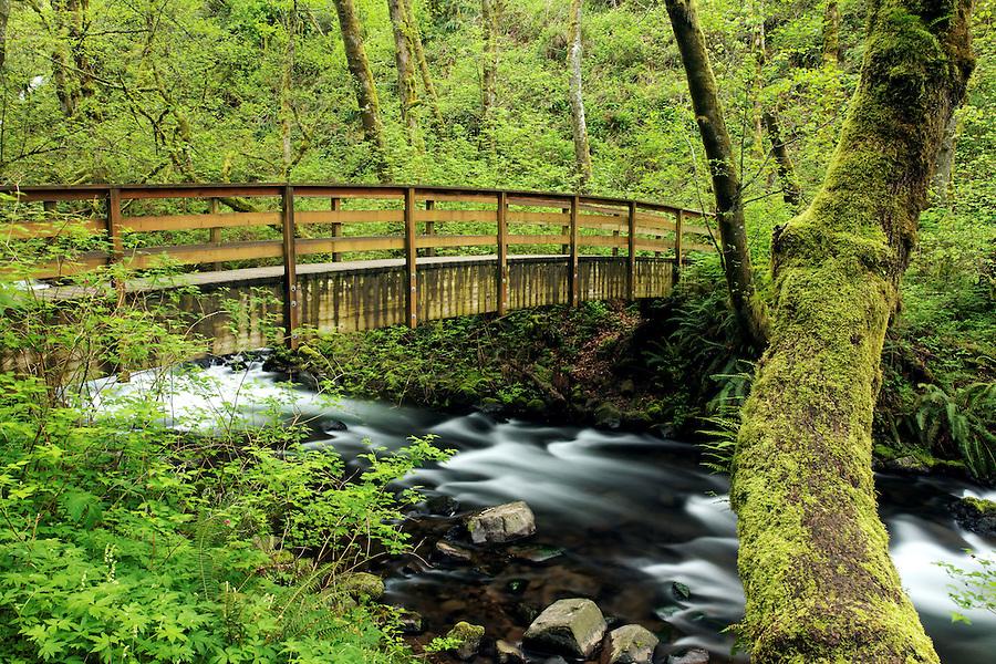 Footbridge over Bridal Veil Creek, Bridal Veil Falls State Park, Columbia River Gorge National Scenic Area, Oregon, USA