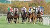 Whoodoo Meadow winning at Delaware Park on 10/6/12