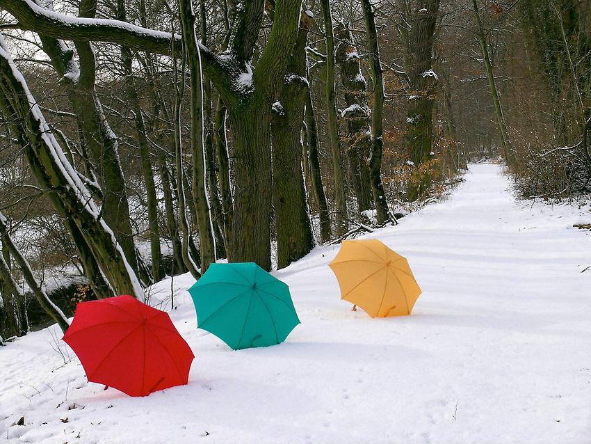 Concept Umbrellas in snow, Germany