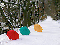 Concept Umbrellas in snow, Germany