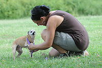 NWA Democrat-Gazette/FLIP PUTTHOFF<br /> EAGER FOR A WALK<br /> Christine Carney, a volunteer at the Rogers Animal Shelter, gets &quot;Newman&quot; ready for a walk Tuesday Sept. 8 2015 around the shelter grounds at 2935 W. Oak St. &quot;Newman&quot; and other dogs and cats will be available for adoption at reduced cost during the &quot;Empty Our Shelters&quot; event Friday and Saturday at most Northwest Arkansas animal shelters, said Bud Norman, manager at the Rogers Animal Shelter. Adoption fee is $10 Friday and Saturday. The reduced fee includes spaying and neutering, Norman said. For details call the shelter at 479-621-1197