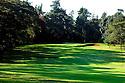 Karen Country Club, Nairobi, Kenya..Photo Credit / Phil Inglis.....