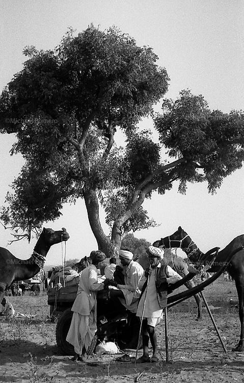 11.2008 Pushkar (Rajasthan)<br /> <br /> Men in the camel camp during the cattle fair of Pushkar.<br /> <br /> Hommes sur le camp pendant la foire aux b&eacute;tails de Pushkar.