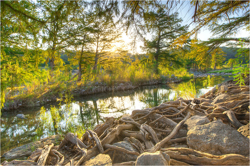 Along a bank of gnarled, twisted cypress tree roots flows the Pedernales River. This little section of the Texas Hill Country is one of my favorites, and when I'm photographing or just enjoy the bounty of Pedernales Falls State Park, it seems I rarely see anyone at this time of day. <br /> <br /> Across the river, the sun has just peeked over the distant cliffs. But this is early September and it is humid. About 30 seconds after I took this photograph, a few unwelcomed visitors - a pack of feral pigs - headed my way. Not wanting a tussle, I quickly packed up my tripod and cameras and headed out ahead of the snorking group. Yikes!