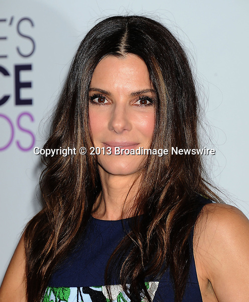 Pictured: Sandra Bullock<br /> Mandatory Credit &copy; Gilbert Flores/Broadimage<br /> 2014 People's Choice Awards - Press Room<br /> <br /> 1/8/14, Los Angeles, California, United States of America<br /> <br /> Broadimage Newswire<br /> Los Angeles 1+  (310) 301-1027<br /> New York      1+  (646) 827-9134<br /> sales@broadimage.com<br /> http://www.broadimage.com