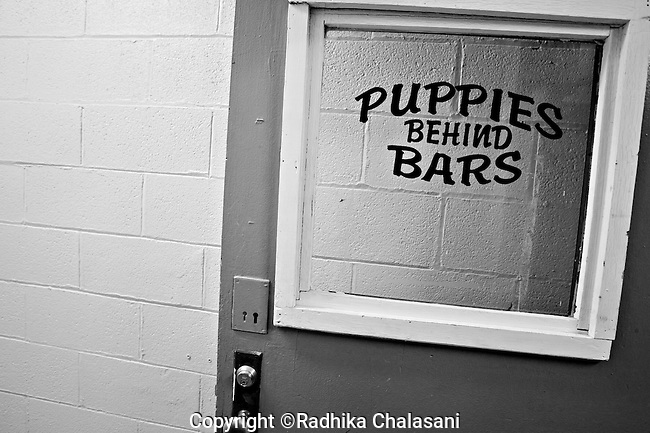 BEACON, NEW YORK:  The door to the classroom for the Puppies Behind Bars Program at Fishkill Correctional Facility. The program works with prison inmates in New York, New Jersey, and Connecticut to train both explosive detection dogs and service dogs, including ones who help injured soldiers or those suffering from post traumatic stress. Fishkill Correctional Facility is a medium security prison in New York with 22 men in the puppy program.