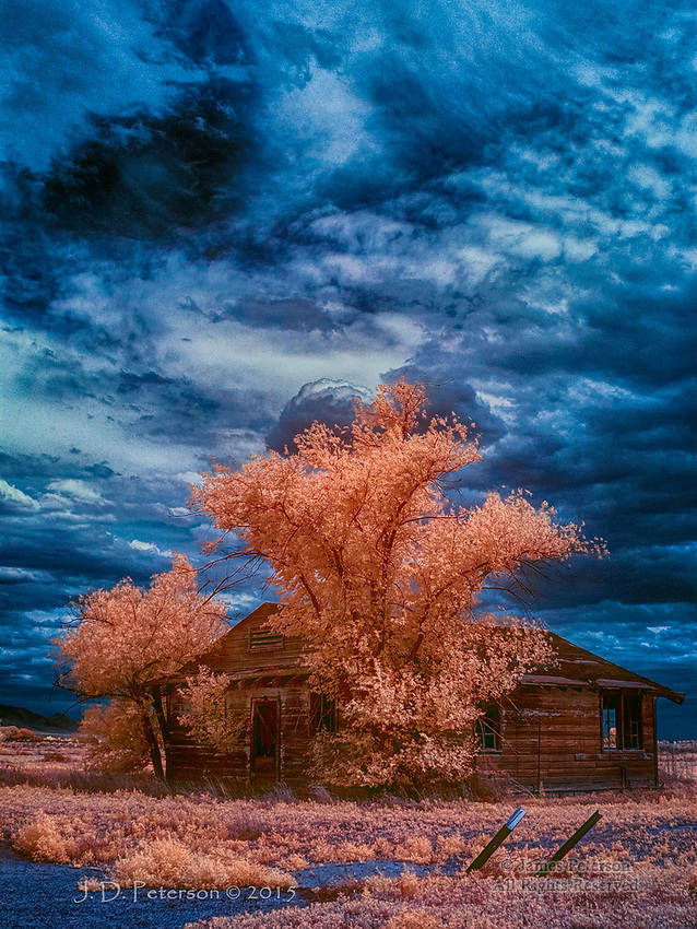 Paradise Misplaced #3: Dwelling in Sulphur Springs Valley, Arizona (Infrared)