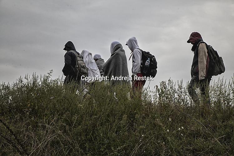 refugee from Austria, Viaggio, Serbia, Ungheria, Ph © Andreja Restek
