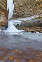 Oak leaves are frozen in the ice below the frozen St Louis Canyon Waterfall in Starved Rock State Park in LaSalle County, Illinois