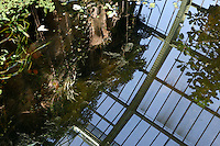 Tropical Rainforest Glasshouse (formerly Le Jardin d'Hiver or Winter Gardens), 1936, René Berger, Jardin des Plantes, Museum National d'Histoire Naturelle, Paris, France. Oblique view of the cave entrance and Art Deco style glass and metal roof  reflected by the morning light in the great pool.