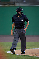 Umpire Josh Gilreath during a Carolina League game between the Myrtle Beach Pelicans and Potomac Nationals on August 14, 2019 at Northwest Federal Field at Pfitzner Stadium in Woodbridge, Virginia.  Potomac defeated Myrtle Beach 7-0.  (Mike Janes/Four Seam Images)