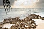 Coast - Barbados
