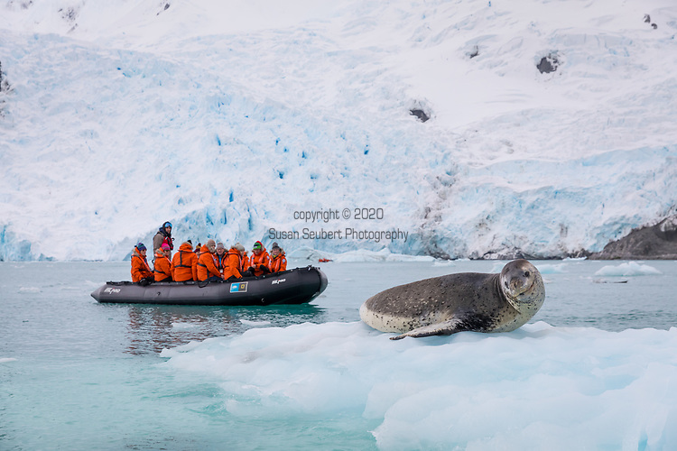 False Bay, Antarctica