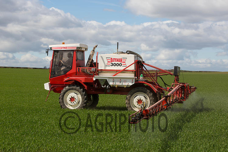 Bateman 3000 crop sprayer applying Uplift to Winter Wheat<br />
