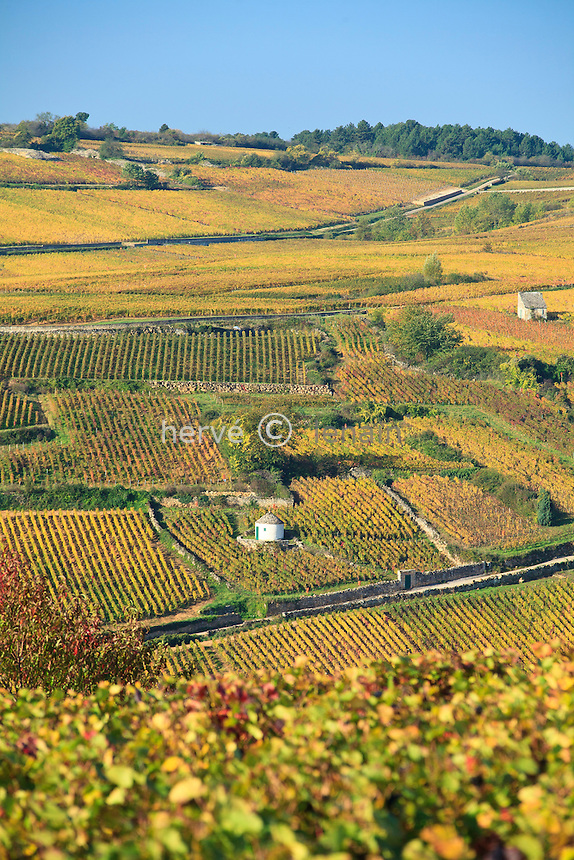 France, Côte d'Or (21), Route des Grands Crus, Pommard, vignoble Côte de Beaune, cabanes dans les vignes en automne // France, Cote d'Or, Route des Grands Crus, Pommard, Cote de Beaune vineyard, huts in vines in automn