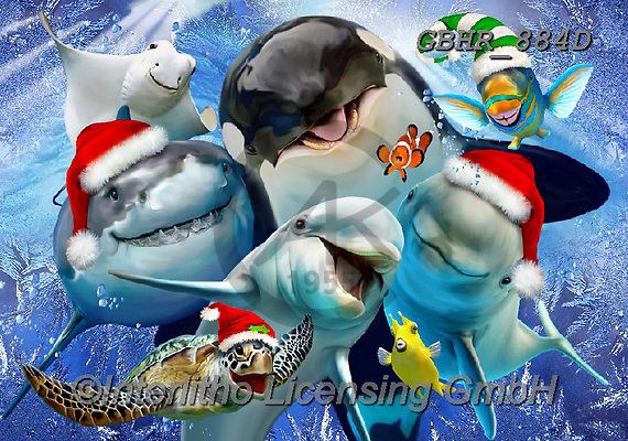 Howard, SELFIES, paintings+++++,GBHR884D,#Selfies#, Christmas,#xa# ,underwater,maritime,dolphins ,sharks,maritime