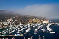 Boats docked in Catalina Harbor, Catalina Island, California