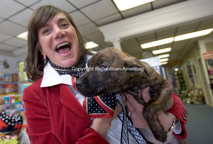 WATERTOWN, CT. 28 January 2011-012811SV11--Denise Benemrito Garassino plays with a puppy up for adoption at her store Bone Appetite in Watertown Friday. Sisters Denise and Lisa Benemrito are the daughters of the owners of Crestwood Ford in Watertown. When that dealership was closed the sisters decided to strike out on a new business path. They opened Bone Appetite, a natural pet food store and boutique.<br /> Steven Valenti Republican-American