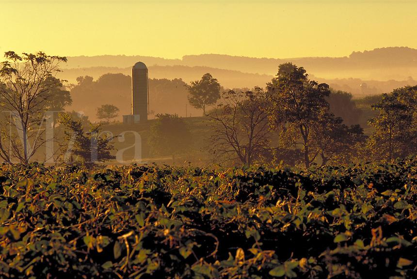 Scenic sunrise over hill country and a grain silo. Strasburg Pennsylvania USA Lancaster County.