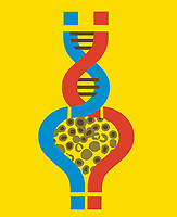 Question marks around cells forming DNA double helix