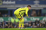 Maarten Stekelenburg of Everton goes off injured during the English Premier League match at Goodison Park, Liverpool. Picture date: December 19th, 2016. Photo credit should read: Lynne Cameron/Sportimage