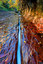 Water flowing through a small crack in the sandstone leads the way to the Subway entrance in the backcountry of Zion National Park.