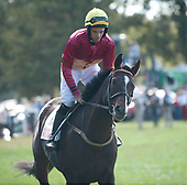 4th National Sporting Library timber stakes - Worried Man