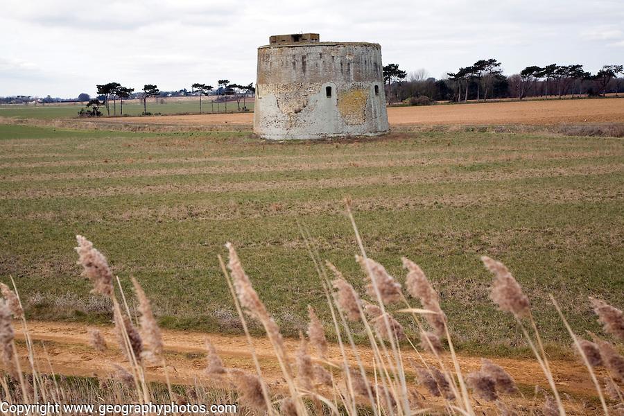 Martello tower Z in field Alderton, Suffolk
