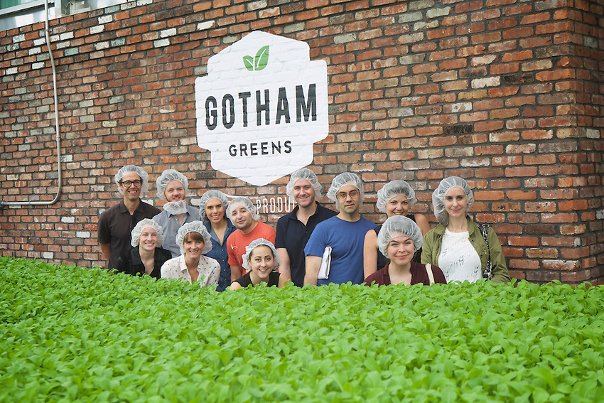 Brooklyn, NY - June 3, 2016: A tour of the Gotham Greens rooftop farm, atop Whole Foods Brooklyn in Gowanus. Audi and Edible Brooklyn gather Media and Tech Influencers to eat and to tour urban farms ahead of the Food Loves Tech Festival.<br /> <br /> CREDIT: Clay Williams for Edible Brooklyn.<br /> <br /> &copy; Clay Williams / claywilliamsphoto.com
