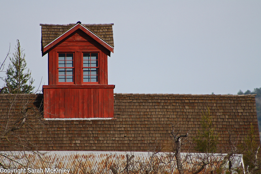 A red-stained, windowed cupola sits atop a shingled roof, with a slightly rusted tin roof in the foreground. Taken in Napa County in Northern California.