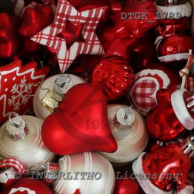 Gisela, CHRISTMAS SYMBOLS, photos, DTGK1789,#XX# Blumen, flores, retrato