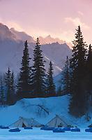 Tents @ Finger Lake Chkpt Alaska Range Iditarod 99 AK