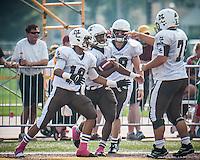 Mt. Carmel's Matt Domer, center, is congratulated by teammates after scoring on a ninety six yard touchdown run