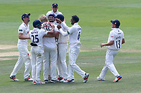 Essex players celebrate the wicket of Keith Barker during Essex CCC vs Warwickshire CCC, Specsavers County Championship Division 1 Cricket at The Cloudfm County Ground on 22nd June 2017