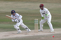 Adam Wheater in batting action for Essex during Essex CCC vs Somerset CCC, Specsavers County Championship Division 1 Cricket at The Cloudfm County Ground on 28th June 2018