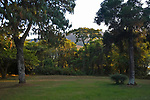 Embassy villa garden, Zomba Mountain