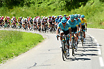 The peloton in action during Stage 8 of the Criterium du Dauphine 2019, running 113.5km from Cluses to Champery, Switzerland. 16th June 2019.<br /> Picture: ASO/Alex Broadway | Cyclefile<br /> All photos usage must carry mandatory copyright credit (© Cyclefile | ASO/Alex Broadway)