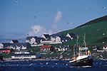 Fishing industry Shetland Islands  1979 1970s UK