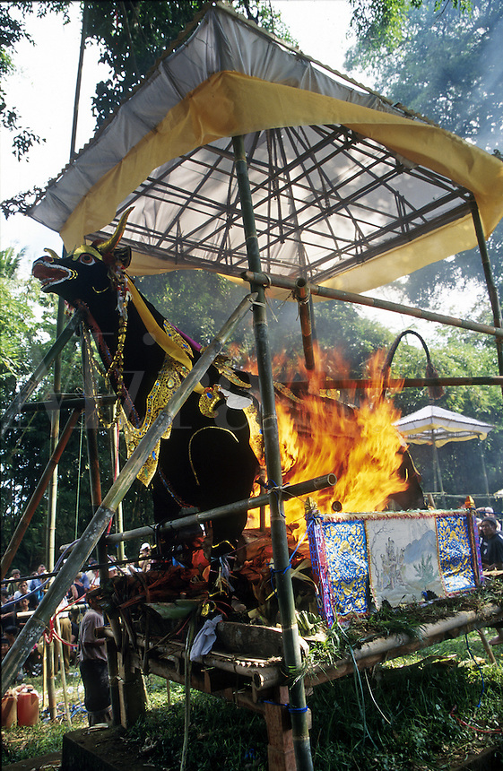 Indonesia, Bali, cremation ceremony (burning bull has body inside)