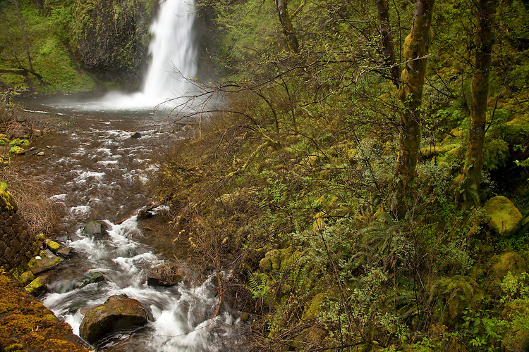 Waterfall Landscape in Columbia River Gorge,Oregon