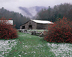 Light Spring Snow, Cades Cove - from GSMA scan for 2008 Smokies calendar