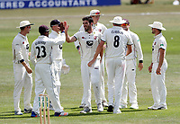Grant Stewart is congratulated after taking the wicket of Zak Chappell during the County Championship Division 2 game between Kent and Leicestershire (Day 2) at the St Lawrence ground, Canterbury, on Mon July 23, 2018