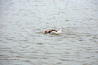 Minda swimming during the first leg of the Aquaphor New York City Triathlon in New York on July 8, 2012.