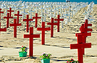 Arlington, West, Memorial, Santa Monica, Beach, Ca, Veterans Crosses Wood, Cross, Star of David, crescents , and Flag, draped coffins, Los Angeles CA; Travel; Destination; View; Unique; Quality
