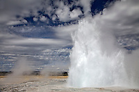 Fountain Geyser, Yellowstone National Park