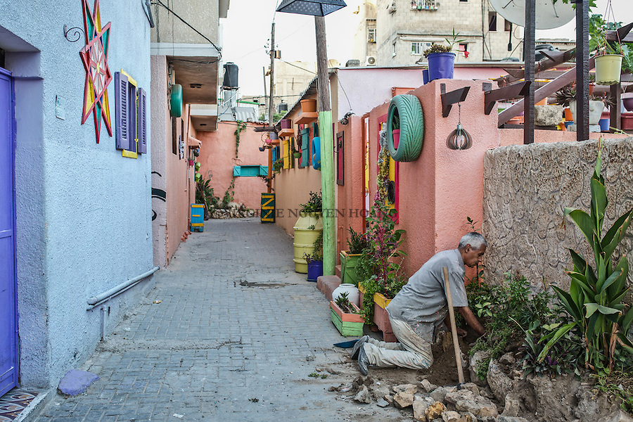 GAZA, Zaytoun: Mohammed Al Saedi is gardening in his street. To put more plants is also in his plan to make a better atmosphere in his neighbourhood. 14/08/15<br /> <br /> <br /> GAZA , Zaytoun : Mohammed Al Saedi jardine dans sa rue. Planter plus de plantes fait &eacute;galement partie de son plan pour cr&eacute;er une meilleure atmosph&egrave;re dans son quartier . 14/08/15