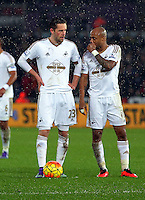 (L-R) Gylfi Sigurdsson and team mate Andre Ayew of Swansea confer before a free kick during the Barclays Premier League match between Swansea City and Crystal Palace at the Liberty Stadium, Swansea on February 06 2016