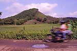 Motorcycle whizzes past pasture and half-denuded hill (once Cotton-top tamarin habitat). Colombia.